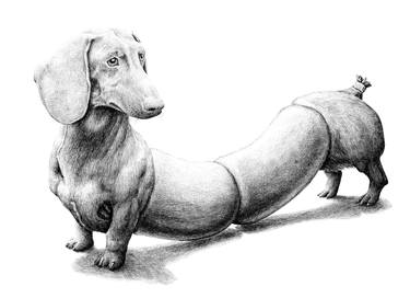 Image of: Dog Cafe Dog Sausage Drawing Saatchi Art Dog Sausage Drawing By Redmer Hoekstra Saatchi Art