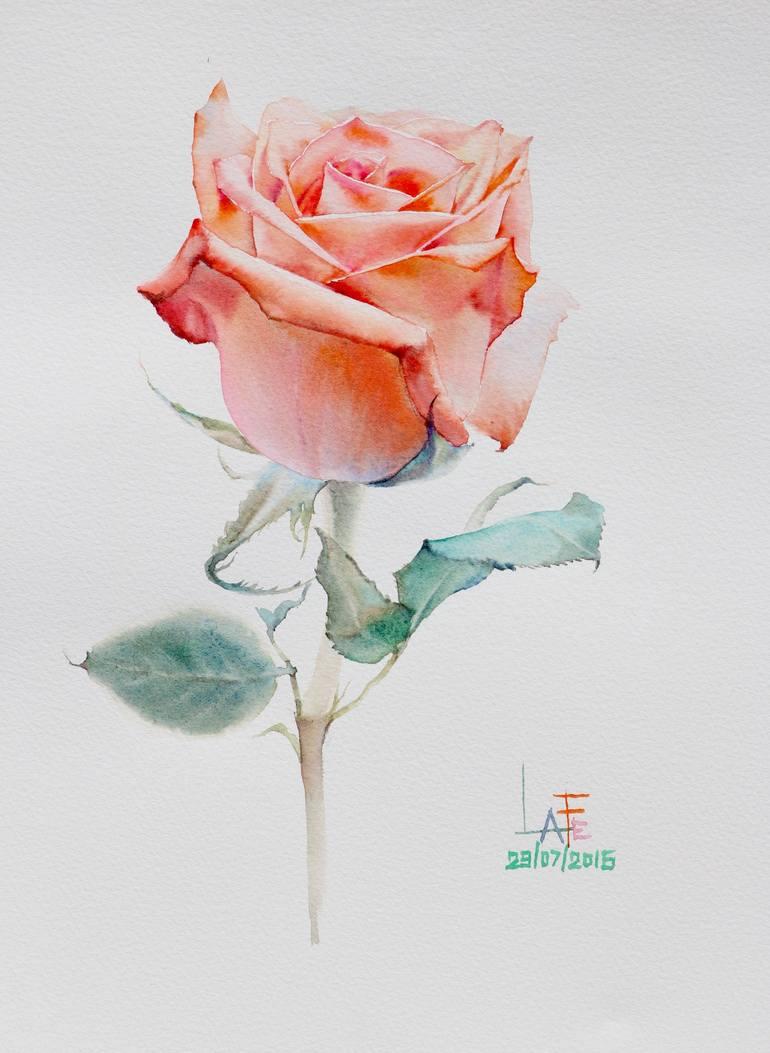 Watercolor Ros €� Cluber