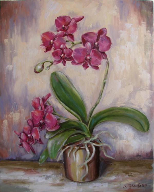 Saatchi Art Orchid. Painting Kateryna Shuvalova