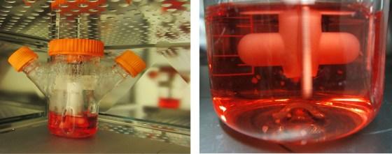 Bioreactor_system