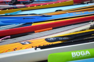 Paddle boards available for rent in SLO CAL
