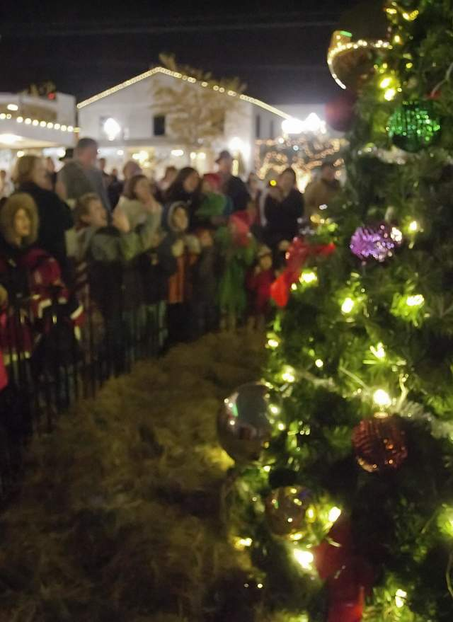 Gullo House Christmas Lights 2020 : gullo, house, christmas, lights, Conroe, Christmas, Celebration