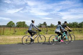 A small group enjoys the Napa Valley scenery as they ride their bicycles down a road.