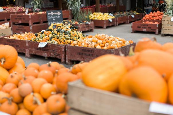 Paynter's Fruit Market - Fall Scene (17)
