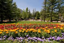 Estes Park Travel Tips Experts And Locals