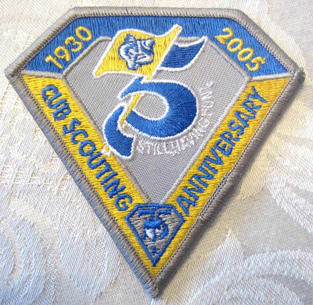 Bsa Boy Scout Uniform Patch Yellow And Blue Silver
