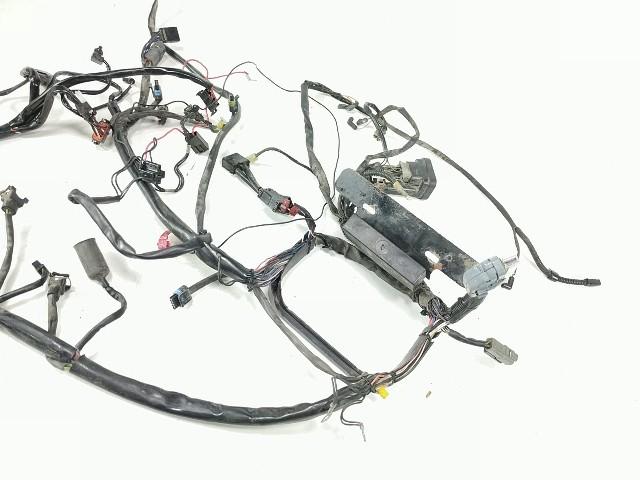 03 Harley Davidson Softail Heritage FLSTC Main Wiring Wire