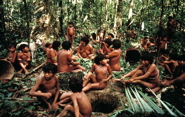 El modo de vida de los yanomamis está amenazado por la minería de oro ilegal en la Amazonia.