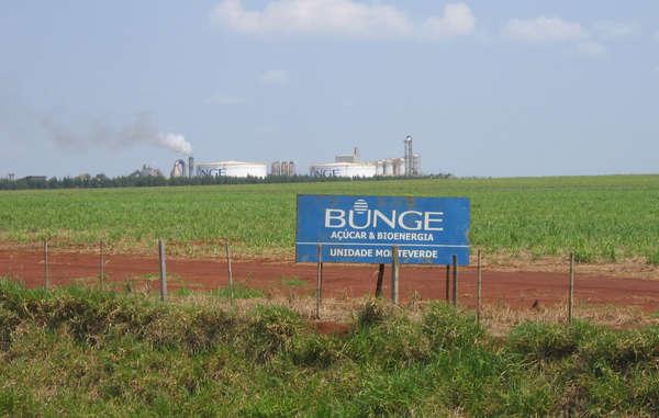 Bunge achète la canne à sucre cultivée sur les terres revendiquées par les Guarani.