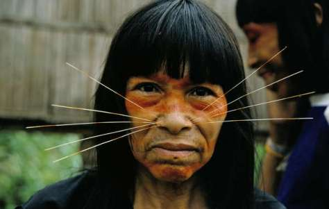 The Matsés have been dependent on and managed a large area of the Amazon Uncontacted Frontier for generations.