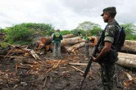 Une opération terrestre de lutte contre la déforestation n'a pas réussi à repousser les bûcherons du territoire awá.