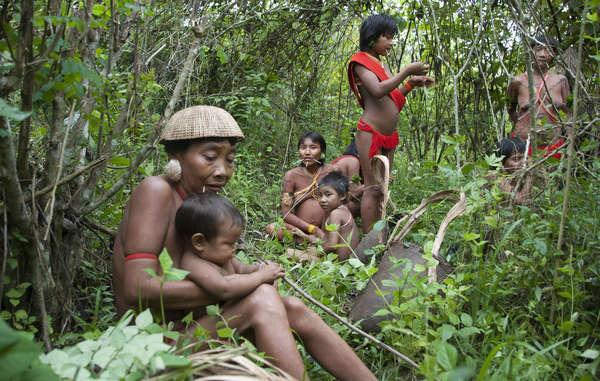 Nella sua enciclica, Papa Francesco ha riconosciuto il ruolo fondamentale dei popoli indigeni nella conservazione delle loro terre.