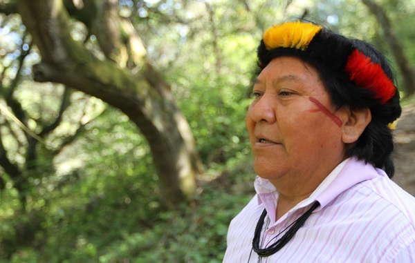 Durante la sua eccezionale visita negli Stati Uniti Davi Yanomami ha visitato il Muir Woods in California e altri luoghi famosi.