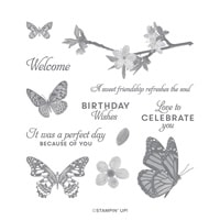 Butterfly Wishes Cling Stamp Set