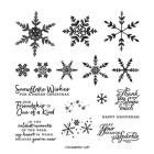 Snowflake Wishes Photopolymer Stamp Set