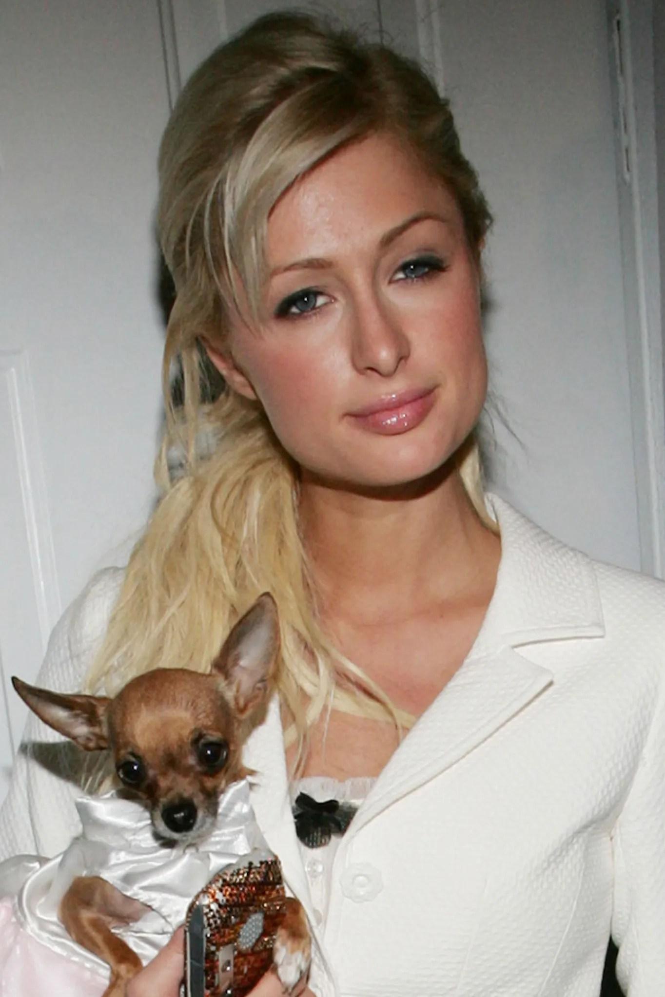 London Tipton Paris Hilton : london, tipton, paris, hilton, Paris, Hilton, Accused, Stealing, Viral, Tweet, Internet, Vogue