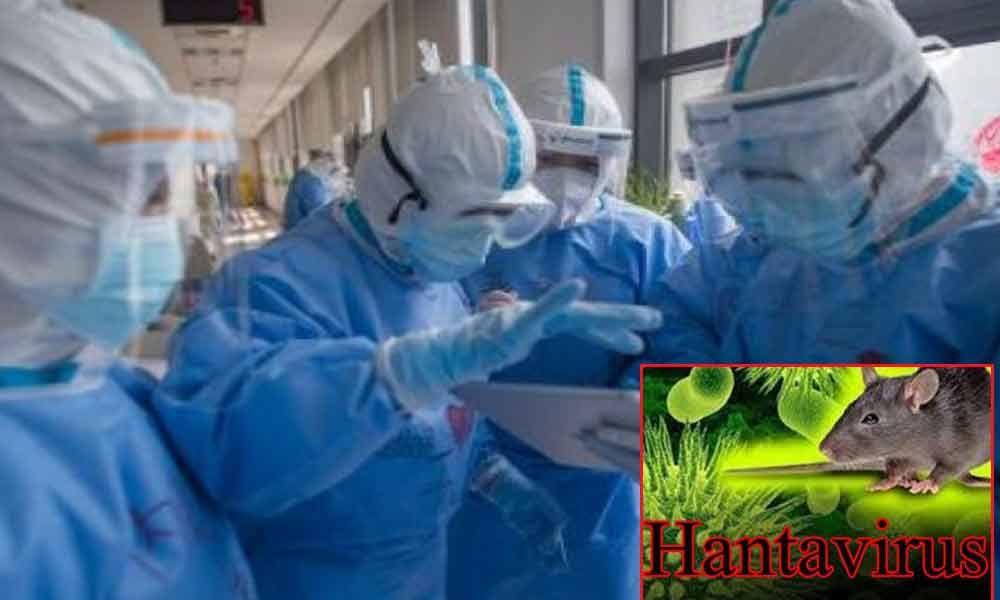 Hantavirus kills a man in China, people frantic on social media