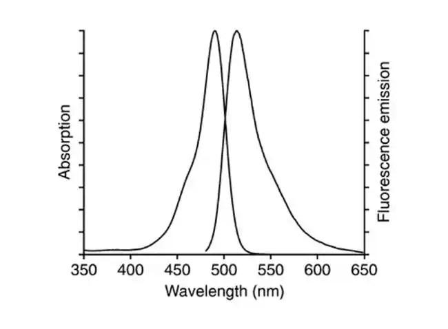 CellEvent Senescence Green Flow Cytometry Assay Kit