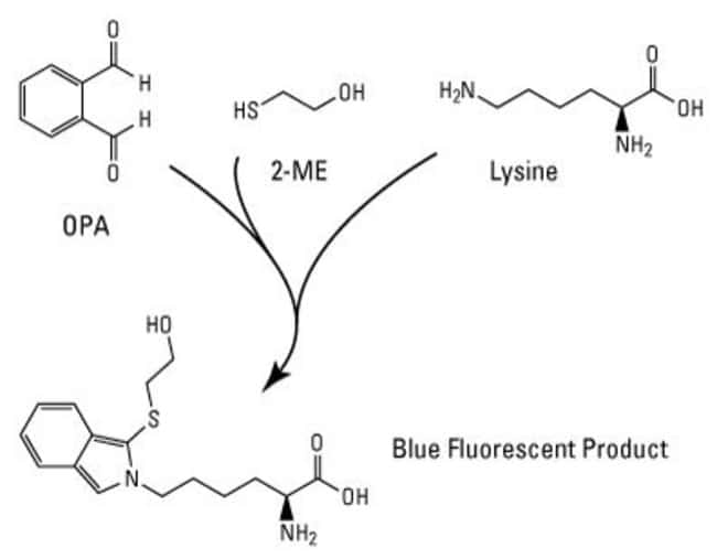 Fluoraldehyde o-Phthaldialdehyde Reagent Solution (OPA