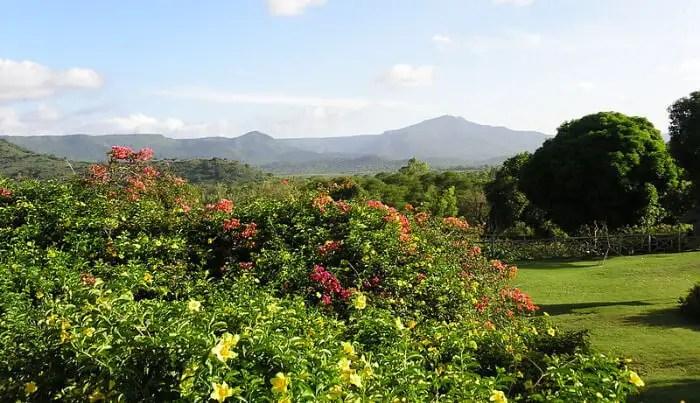 Walk in the beautiful flower valley