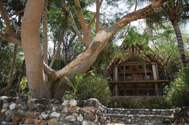 Outside view of an exotic, elaborate looking home surrounded by trees and other vegetation.
