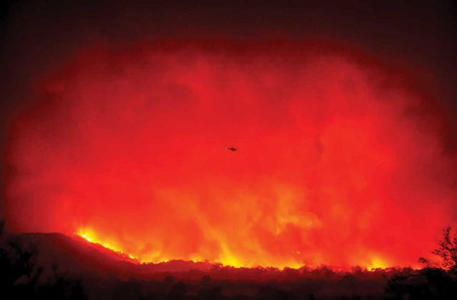 The dry vegetation and strong Santa Ana winds made the fire explode overnight, driving it over 10 miles through ranch lands and neighborhoods and ultimately into downtown Ventura. Jeff Muth Photo