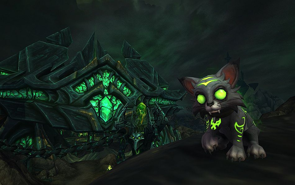 This Years World Of Warcraft Charity Pet Is An Adorable