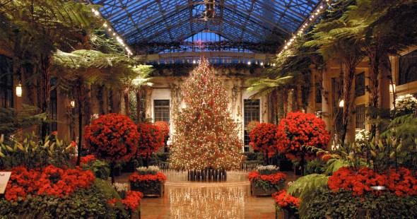 Image result for longwood garden christmas