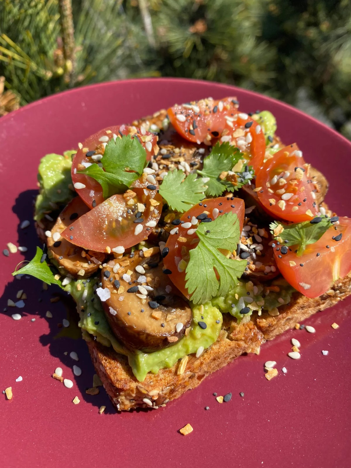 5 Healthy Breakfast Toast Recipes That Will Fuel Your Morning
