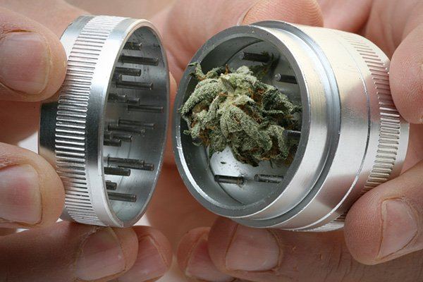 using a cannabis grinder - a close up of weed in the grinder