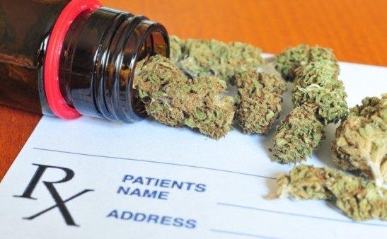 Medical Marijuana Canada   Online Cannabis Dispensary   Weed Hub DirectMedical Marijuana Canada   Online Cannabis Dispensary   Weed Hub Direct