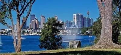 Las autoridades de Sydney están usando árboles para enfriar la ciudad.