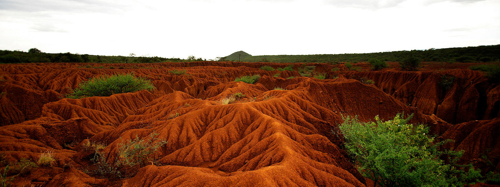 Image results for soil erosion in the past