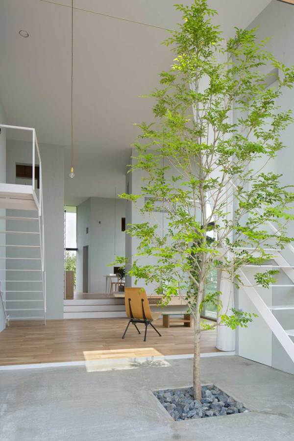 Stories Design Trees In Interiors Curated Yellowtrace