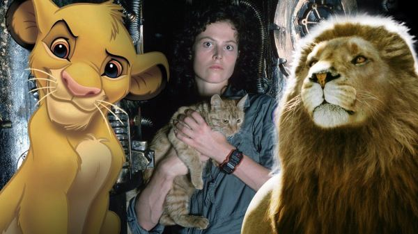 Top 10 Cats in Movie History IGN