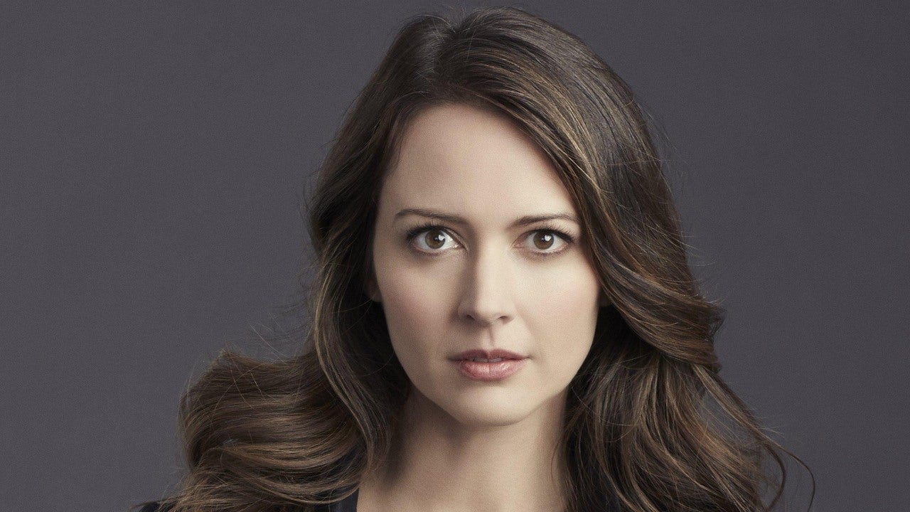 Person Of Interest Amy Acker On Roots Journey IGN