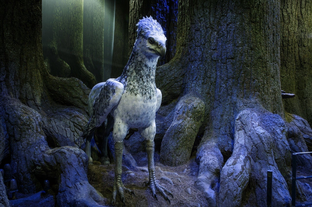 New Forbidden Forest Area Spotlights Creatures and