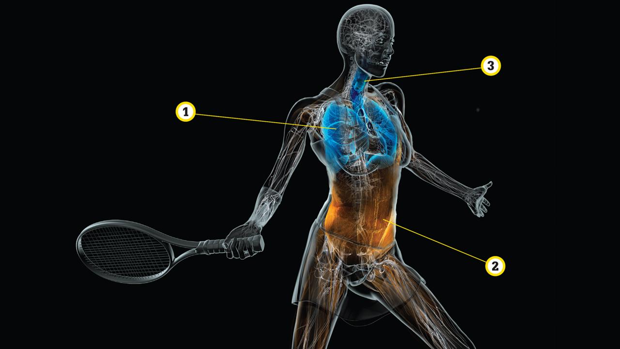 Venus Williams; Maria Sharapova; Tennis; WTA; grunting; Science of Sport; Sportsnet