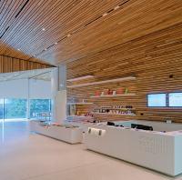 Interior Wood Ceilings | Hunter Douglas