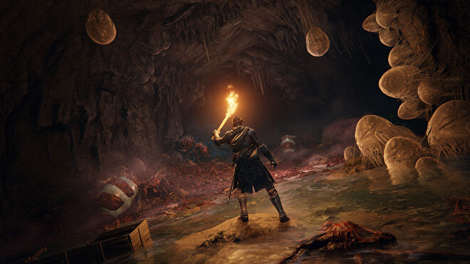 A warrior holds up a burning torch in a dark cave filled with ants and eggs in an Elden Ring screenshot.