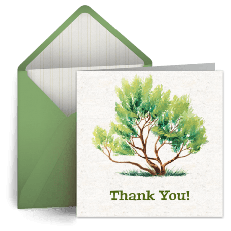 Giving Tree Thank You ECard Thank You Note Greeting Card Punchbowl