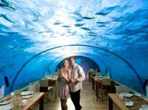 Best Underwater Hotels in the World: Fiji, Dubai, Florida ...