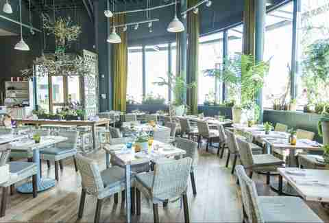 Best Restaurants in the Peninsula San Mateo San Carlos