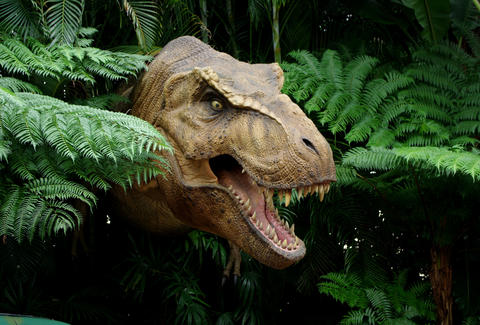 T Rex Fossils Reveal That the Dinosaur Had Sensitive Skin