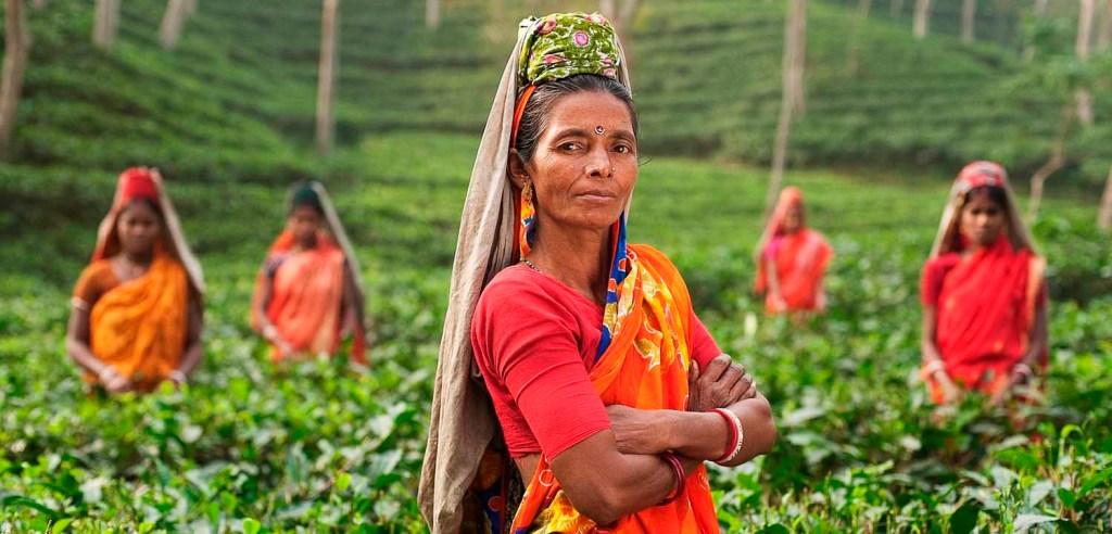 Día Internacional de la Mujer - Derechos de la Mujer y la Paz Internacional