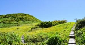 草原の遊歩道