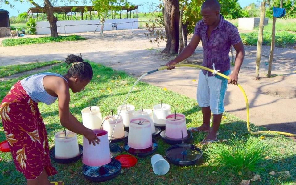 Maura og Manuel er ved at rengøre drikke- og foderskåle