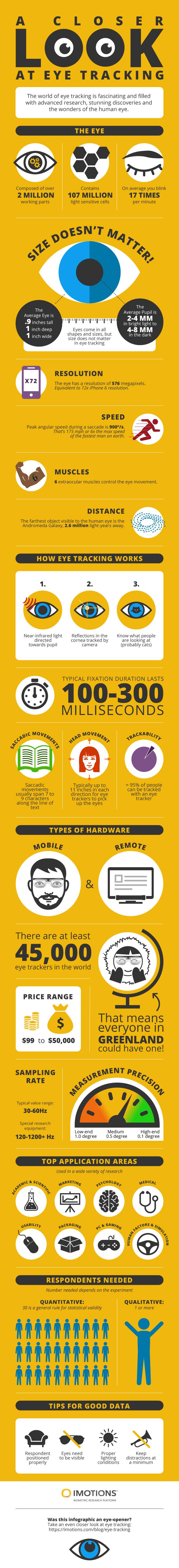 eye tracking infographic