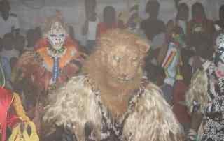 Faux-lions
