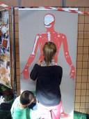 La silhouette sur laquelle les enfants devaient replacer le os.